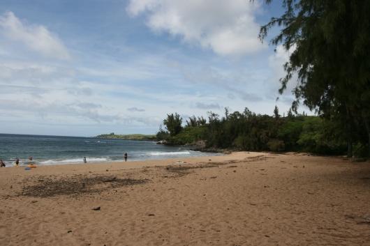 D. T. Fleming Beach